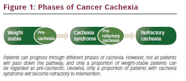 >Prevention of Cachexia in Cancer