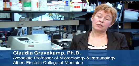 Radioactive Bacteria Targets Metastatic Pancreatic Cancer
