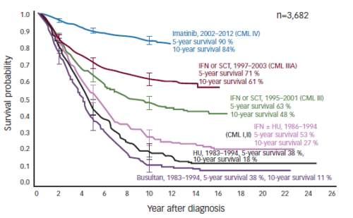 Chronic Myeloid Leukaemia – The Choice of Therapy and Future Perspectives
