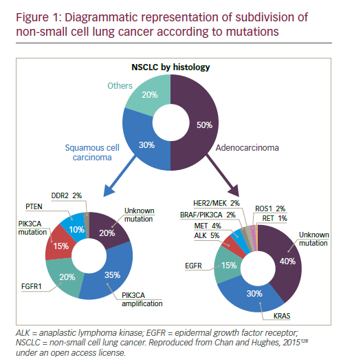 Immunotherapy and Targeted Therapies in the Treatment of Non