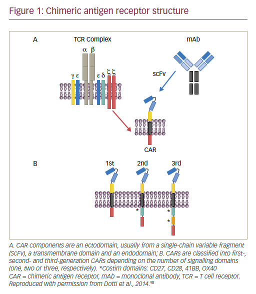 Clinical Development And Manufacture Of Chimeric Antigen Receptor T