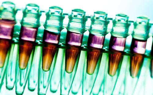 Liquid Biopsies to Predict Therapeutic Response – The SOLAR-1 Study