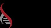 International Myeloma Foundation (IMF)
